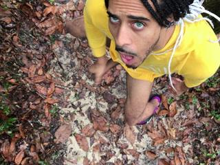 King of the Rainforest (4K)